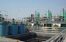 年产2万吨衣康酸技术改造项目